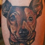 koira tatuointi colour tattoo dog portrait