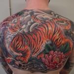 tiger backpiece tattoo tiikeri tatuointi selkätatuointi oriental japanese tattoo