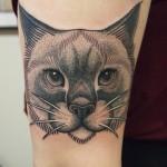 Dotwork cat tattoo kissatatuointi